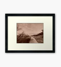mysterious but beautiful nature Framed Print