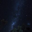 Milky Way by Silken Photography