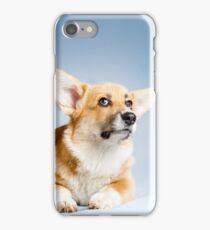 Funny corgie iPhone Case/Skin