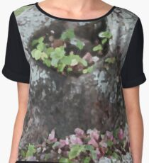 Bougainvillea Fallings Women's Chiffon Top