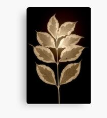 Leaves in Sepia Canvas Print