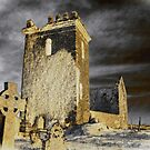 Disused Church, County Wexford, Ireland by David Carton