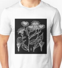 Britton And Brown Illustrated flora of the northern states and Canada 0693 Eurybia radula BB 1913 Unisex T-Shirt