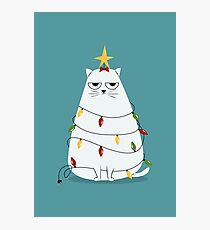 Grumpy Christmas Cat Photographic Print