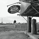 Dixie Gasoline by Rodney Williams