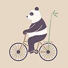 My Bamboo Bicycle by Teo Zirinis