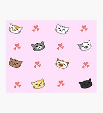 Kittens!! Photographic Print