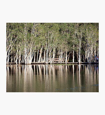 Duck Lake Photographic Print