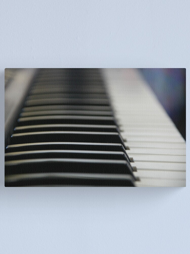 Alternate view of Ebony And Ivory Canvas Print