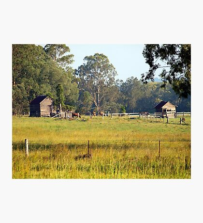 Life on the land Photographic Print