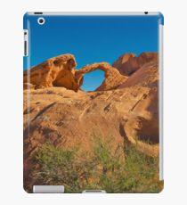 USA Nature 3 iPad Case/Skin