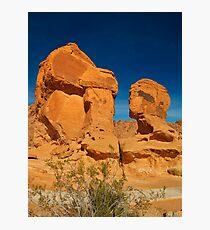 USA Nature 6 Photographic Print