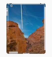 USA Nature 9 iPad Case/Skin