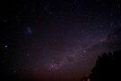 Starry, Starry Night by Odille Esmonde-Morgan
