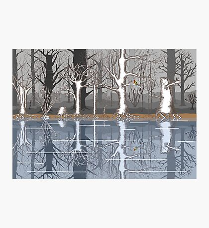 Forest reflections Photographic Print