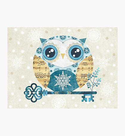 Winter Wonderland Owl Photographic Print
