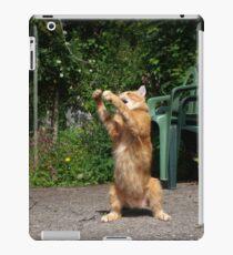 Cat fishing iPad Case/Skin