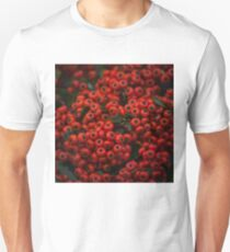 087 - Red T-Shirt