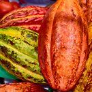 Cacao pods... by Wieslaw Jan Syposz