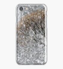 20.1.2017: Tree in Snowfall iPhone Case/Skin