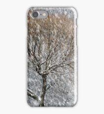 20.1.2017: Tree in snowfall III iPhone Case/Skin