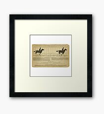 Eadweard Muybridge – 1830-1904 – Animal Locomotion Theory – Horse Poster - White Framed Print