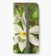 Spring Daffodil 1 iPhone Wallet/Case/Skin