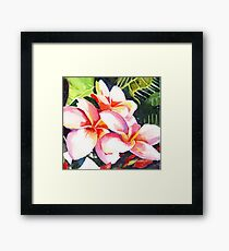 Pink Plumeria Heaven Scent Framed Print