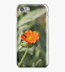 Orange Geum iPhone Case/Skin