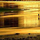 Beach runner by Gary Power