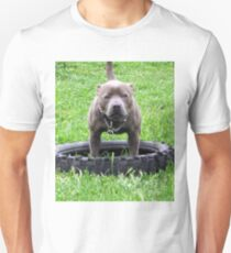 Staffordshire Bull Terrier, Ready To Play Tug Of War T-Shirt