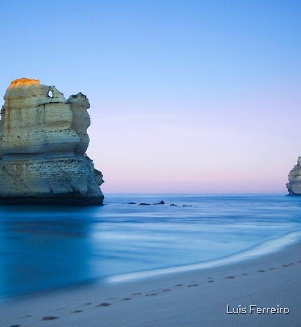 Just Leave Footprints by Luis Ferreiro