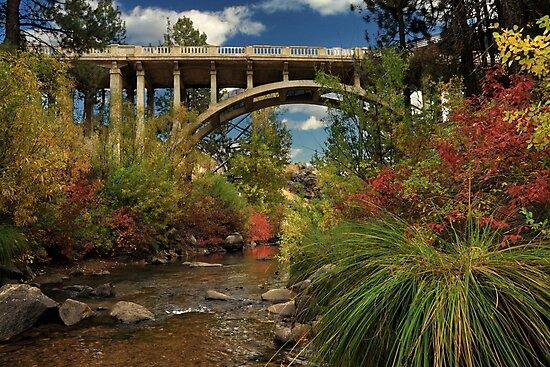 Historic Highway Bridge - Susan River by James Eddy