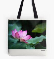 Water Lily by Winnie Tote Bag