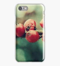 Red Winter Berries iPhone Case/Skin