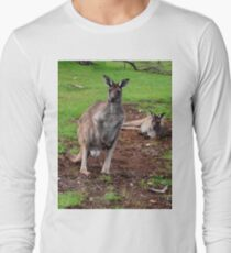 Kangaroos, Whats up Down Under Long Sleeve T-Shirt