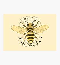 Bee's Knees Photographic Print