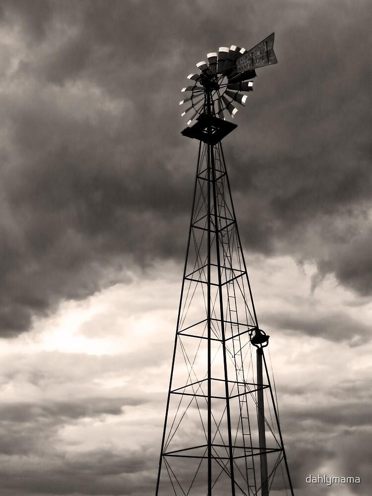 Farm Market Windmill by Shawna Rowe