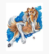 Collie Girl Photographic Print