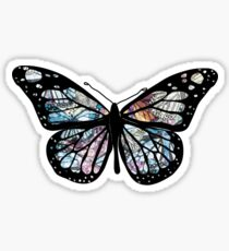 Butterfly Collections Sticker