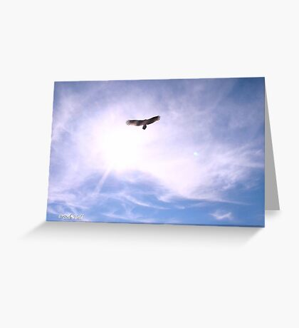 """""""Freebird""""... prints and products Greeting Card"""