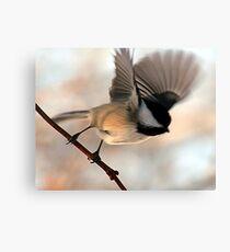 I'll Fly Away Canvas Print