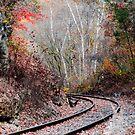 Autumn Tracks by Mary Carol Story