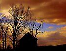 Night Fall by Grinch/R. Pross