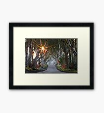 The Dark Hedges / County Antrim / Northern Ireland Framed Print
