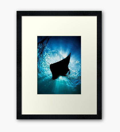 Manta Silhouette Framed Print