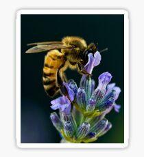 Lavender Bee Sticker