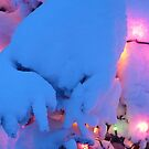 Winter Lights by Jackie Muncy
