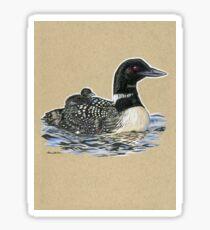 State Bird Series:  Minnesota - Common Loon Sticker
