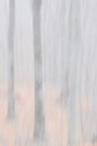 Trees/Fog impressionism by Laurie Minor